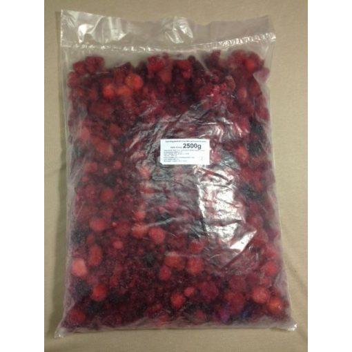 Gyorsfagyasztott erdei gyümölcsmix (2,5 kg/csomag; 4 csomag/karton)